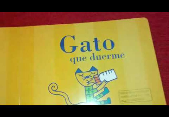 Embedded thumbnail for CUENTO: GATO QUE DUERME